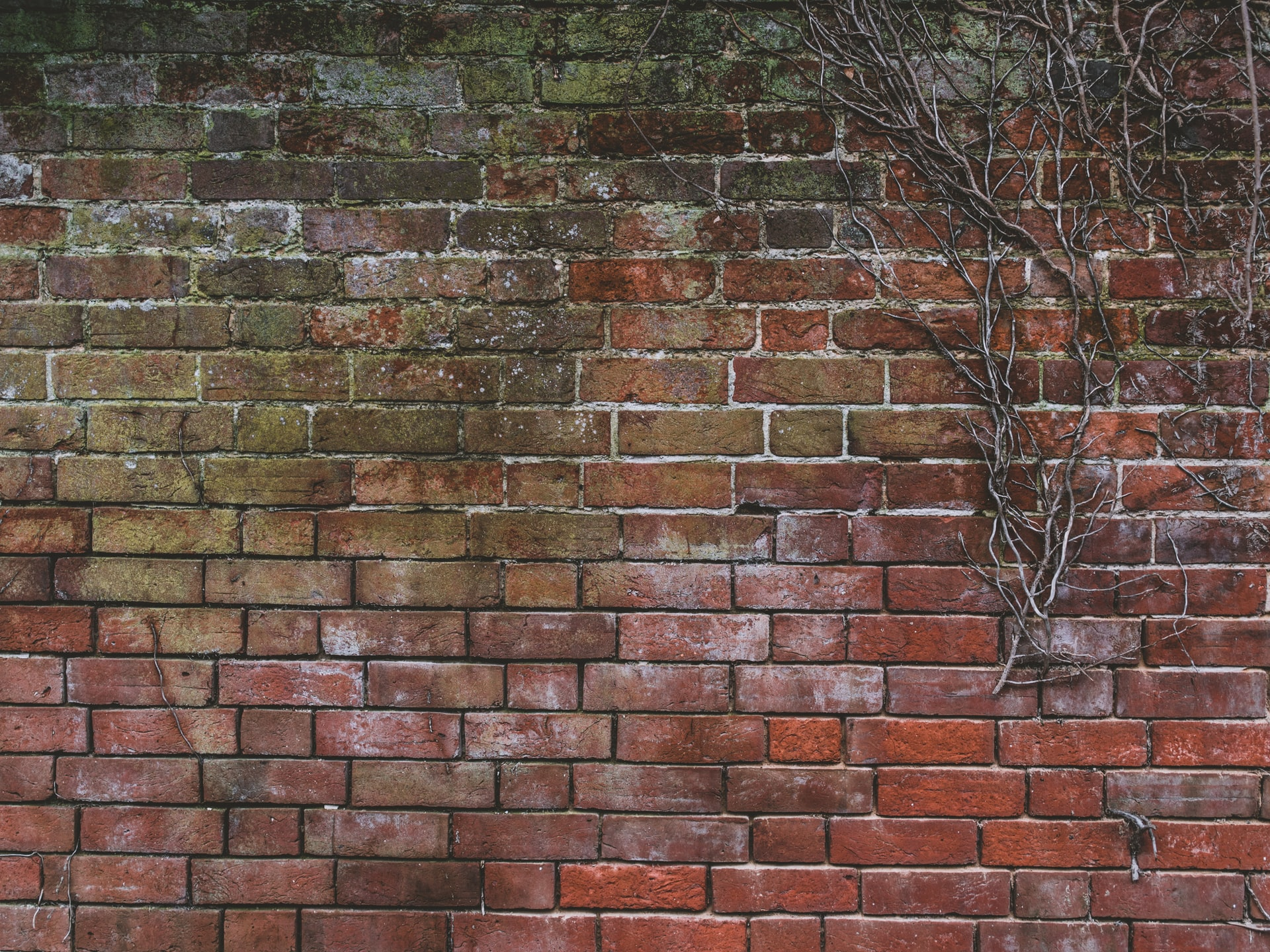 damp proofing treatment in buildings
